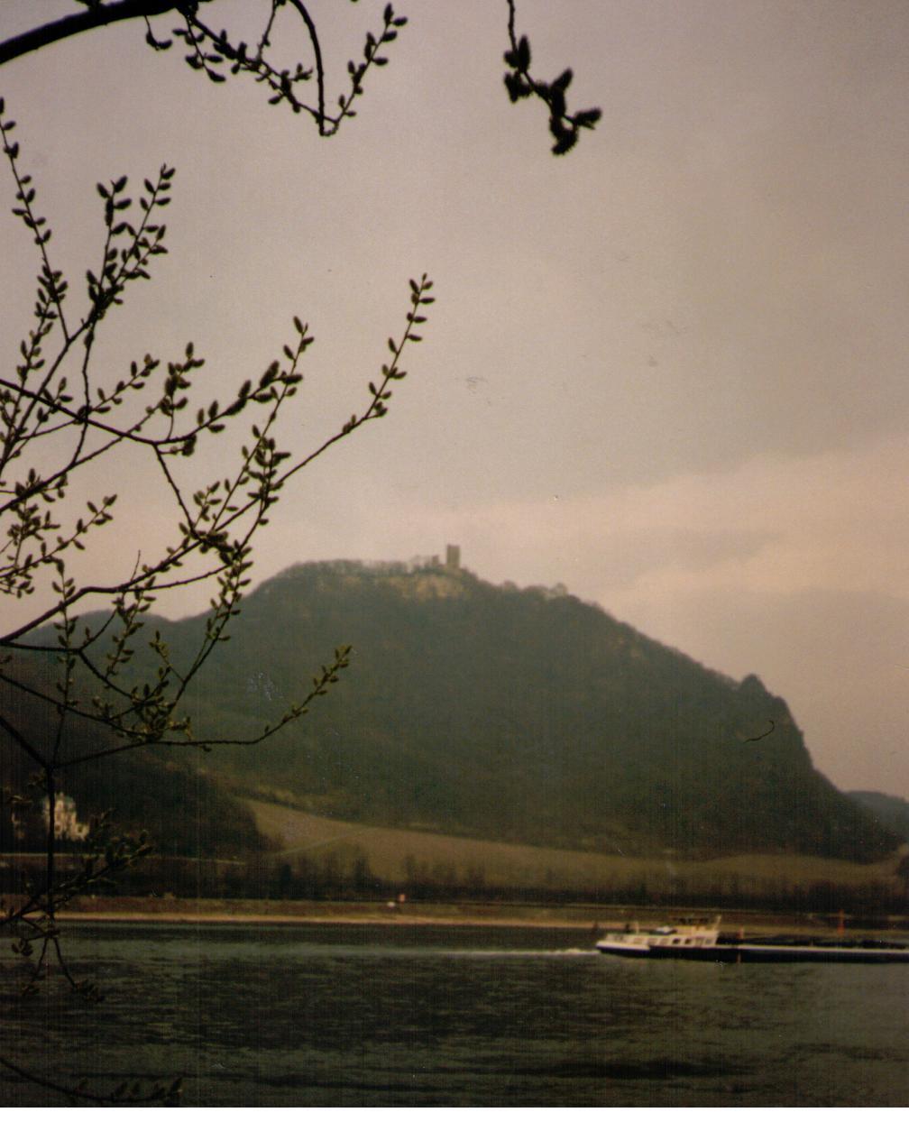 Drachenfels am Rhein