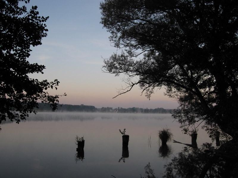 Nebelstimmung am Schwedtsee